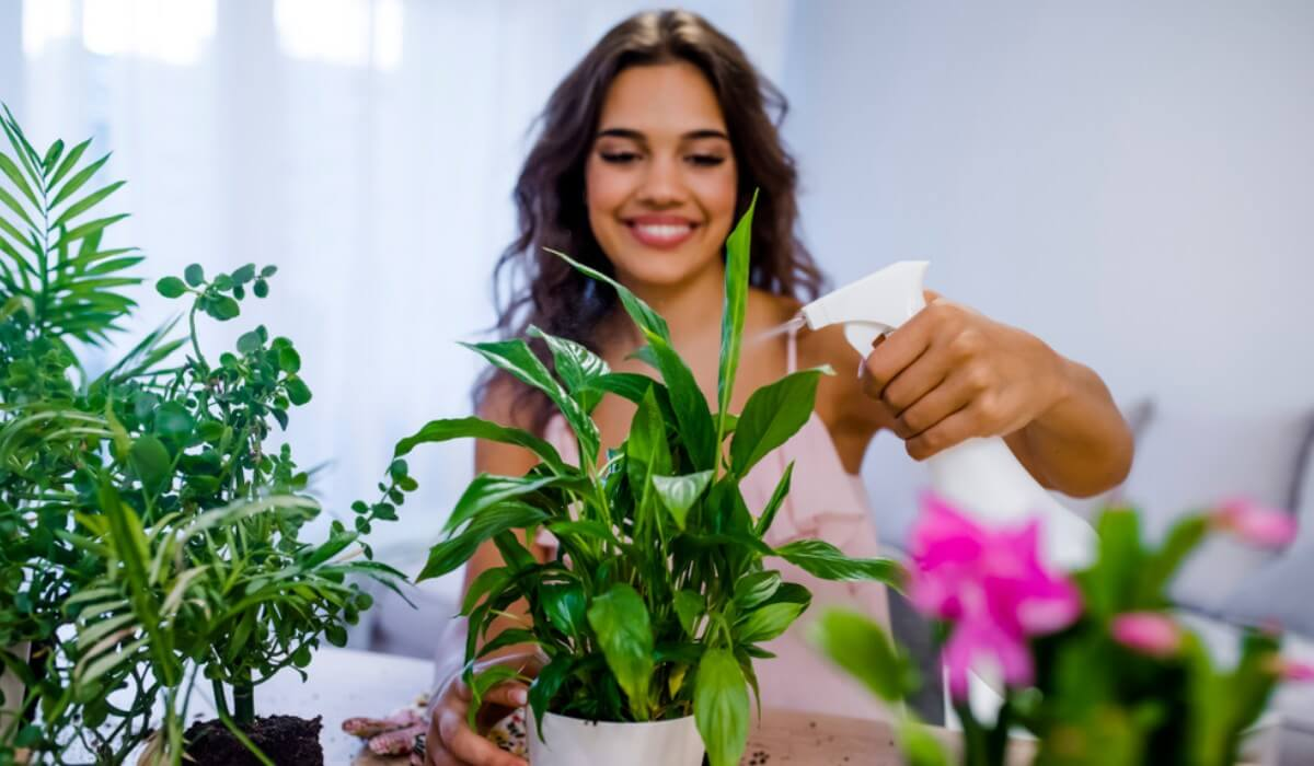 trồng cây giảm stress